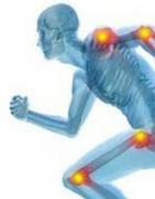 Productos para Artrosis y Artritis